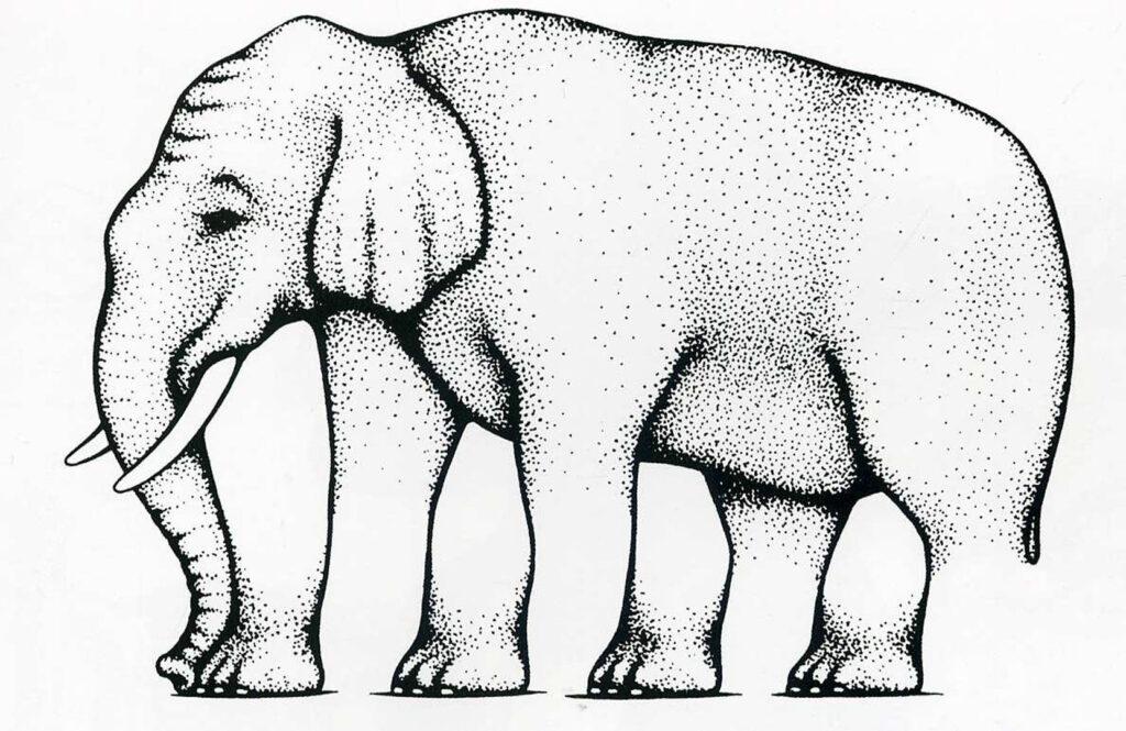 """Afbeelding van een olifant met """"rare"""" poten. Deze dia wordt in de lezing over de Davis-methode gebruikt om des-oriëntatie uit te leggen."""