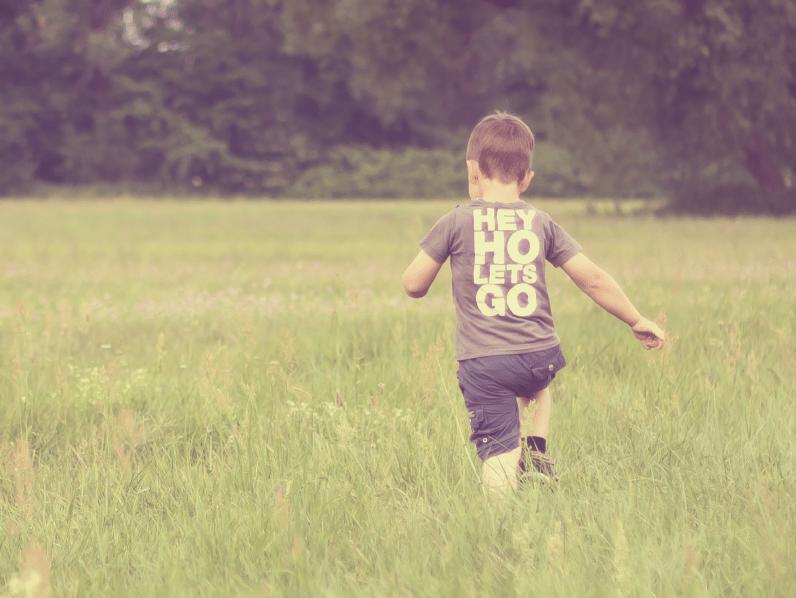 Webinar door collega Gerda Bosma over de autisme-programma's van de Davis-methode.